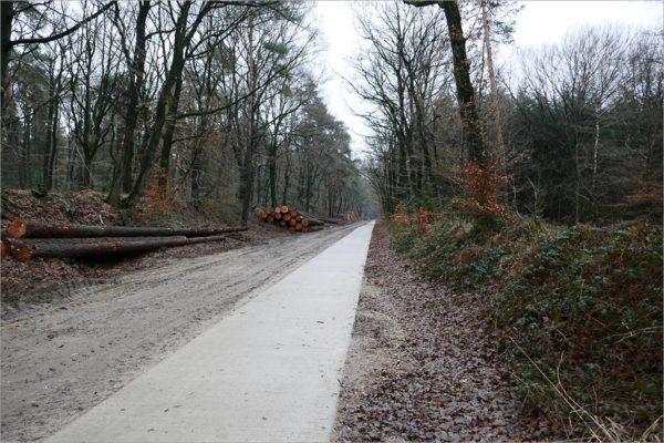 Fietsen door de bossen bij Nijmegen