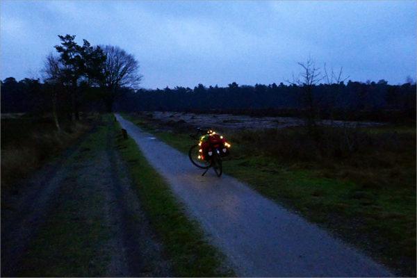 Heidegebied van Den Treek, zuid van Amersfoort.