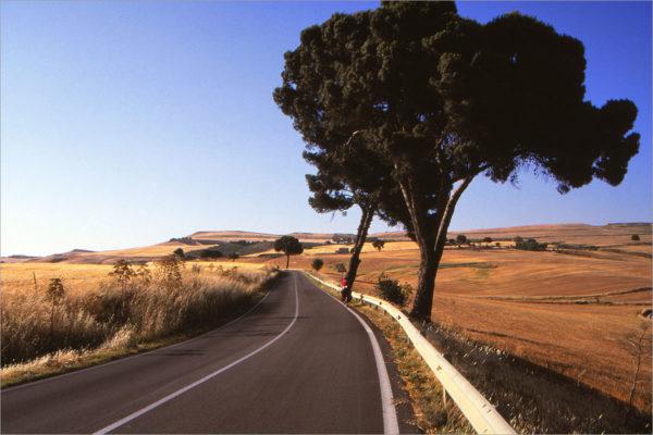 Graanwoestijn op weg naar Gravina in Puglia.
