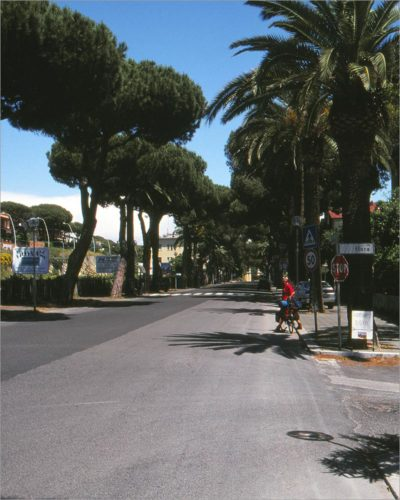 Pijn- en palmbomen, Anzio.